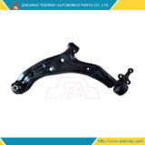 Suspension Arm for Nissan Sentra B15