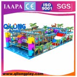 Qilong Produced Indoor Kids Playground Equipment (QL-3098C)