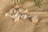 Dried Vegetable Tea Flower Mushroom Growing in Autumn