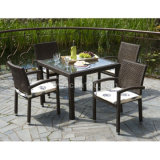 Outdoor Wicker Furniture Dining Set (DS-06043)