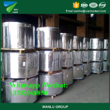 JIS G3302 Dx51d Hot DIP Galvanized Steel Strips/ Q235