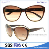 Vogue Designed Square Frame Plastic Demi Pattern Sun Glasses
