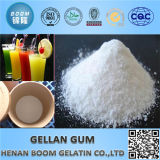 High Transparency Suspending Agent Low Acyl Gellan Gum