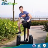2 Wheel Stand up Electric Scooter, Electric Gyropode, Electric Chariot for Sale