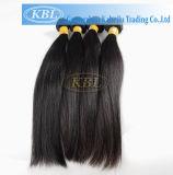 Tangle Free Natural Peruvian Virgin Remy Hair (KBL-pH-ST)