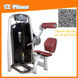 Back Extension Tz-6006 Gym Club Commercial Fitness Equipment/Exercise Gym Machines