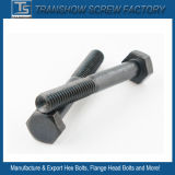 Black Oxide Mild Steel Internal Threaded Bolt