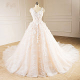 Champagne Tulle Flower Princess Wedding Dress Bridal Gown