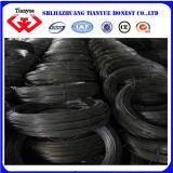 Black Annealded Iron Wire (TYB-0026)