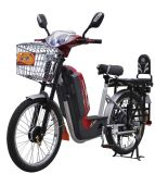 Electric Bike (TDL-01Z)