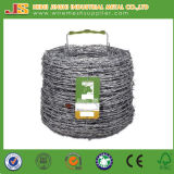 Hot DIP Galvanized 2 Strands 4 Points Barb Barbed Wire