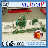 Complete Mango Syrup Processing Plant/Line