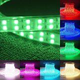 Shenzhen Factory 110V 220V 50m/Roll Flexible Waterproof RGB LED Strip