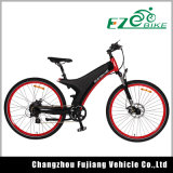 Fashion Rear Wheel Motor Electric Mountain Bike
