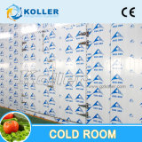Walk in Chiller Cold Room for Long Time Storage