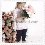 Lovely Baby Toddler Little Girl Clothes Clothing Set