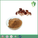Healthcare Anti-Cancer Product Shiitake Mushroom Extract Polysaccharides 30%