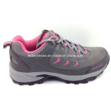 Latest Fashion Ladies Running Shoes Hiking Shoes Climbing Shoes Sneaker (ws16126-8)