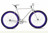 Smart City Fixed Gear Bike with Hi-Ten Steel Frame