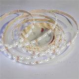 Professional 12W/M Flexible SMD2835 LED Light Strip CE RoHS