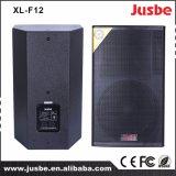 12 Inch 300 Watts Professional Stage Sound System OEM Speaker