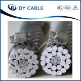 Aluminum Conductor Steel Re-Inforced Electric Cable for Overhead Application Made in China