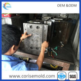 Customized Precision Die Casting Injection Mould