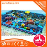 Amusement Park Shark Indoor Playgrounds with Ball Pool Equipment