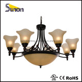 Vintage Style Chandeliers/Painting Lighting Fixture Lamp
