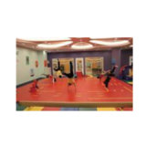 Customized Game/Dance Field Floor Mats for Sale