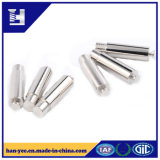 Custom Made Screw/Bolt with High Quality