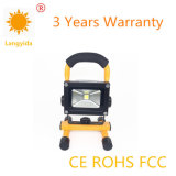 China Manufacturer 20W Flood Light Ce RoHS Approval