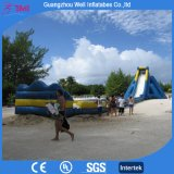 Largest Kids and Adults Inflatable Slide for Water Playing Water Slide