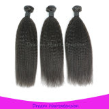 Top Quality Kinky Straight Brazilian Virgin Human Hair