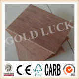 1220X2440mm Keruing Plywood for Container Floor