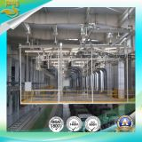 Painting Producing Line