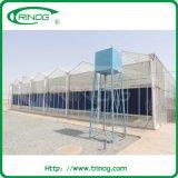 Trinog Glass Greenhouse catalog