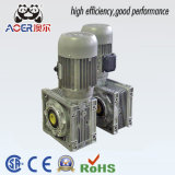 Worm Geared Motor Reducer Low Rpm