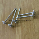 "2.5"" Galvanized Roofing Nail with Umbrella Head"