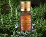 Herbal Antioxidant Natural Rosemary Oil 98%