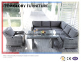 Garden Outdoor Rattan Wicker Sofa Set (TG-050)