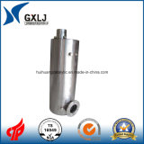 Stainless Steel Silencer, Catalytic Muffler for Auto Exhaust System