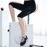 Fitness Home Chair Home Furniture for Exercise Body Building