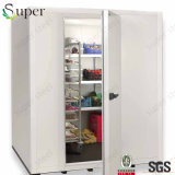 Walk in Freezer Cooler Box with Lowest Price