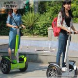 Wind Rover 72V Prices City Model Electric Scooter