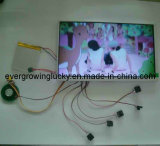 4.3 Inch Video Module for Card