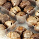 China Origin Nutritious Health Benefits Single Black Garlic