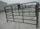 Australia Hot Sale Galvanized Sheep Panels