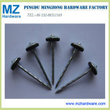 High Quality Twisted Smooth Shank Galvanized Umbrella Roofing Nail