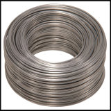 Bwg18 Hot Dipped Galvanized Wire